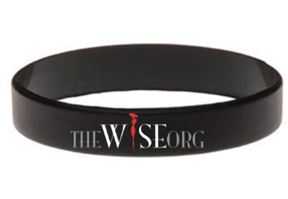 WISE Wristband